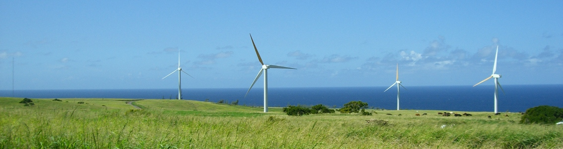 Duplomatic partakes in Small Wind Turbines technology development